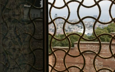 Advantages and Disadvantages to Window Bars